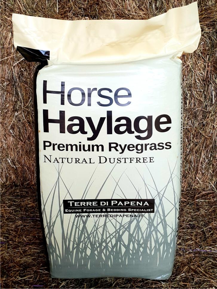 Foraggi di alta qualità per cavalli